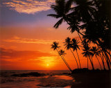 Beach Sunsets with FriendsTravel.com